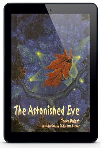 The Astonished Eye [eBook] by Tracy Knight
