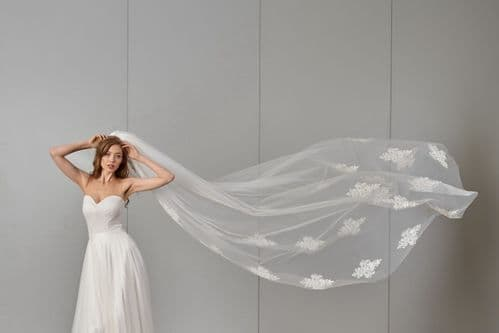 Lace cathedral bridal veil, single tier wedding veil