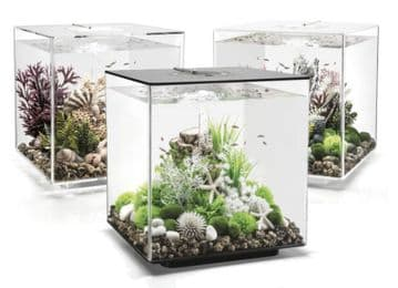 Biorb Cube Aquarium 30 ltr Black (Mcr Light)
