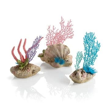 Oase Biorb Coral Fan & Shells Set