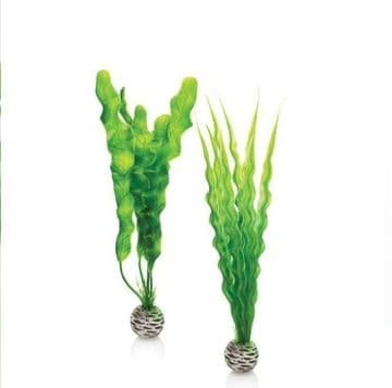 Oase Biorb Easy Plants Aquarium Decoration