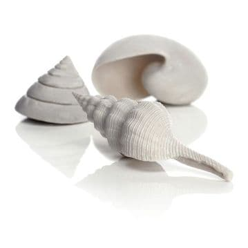 Oase Biorb Sea Shell Set of Three