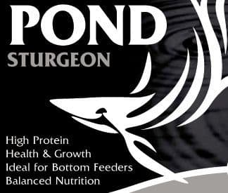 Pond Sturgeon Fish Food