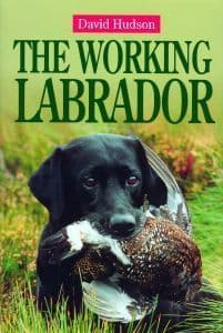 The Working Labrador by David Hudson