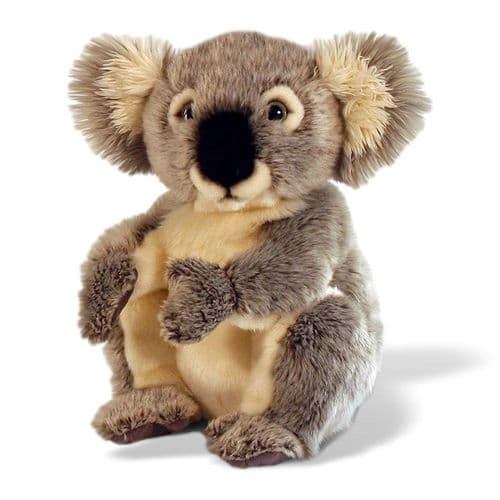Personalised Koala Bear - 20cm