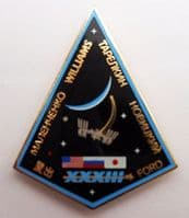 Expedition 33 ISS International Space Station Mission Lapel Pin Official NASA