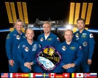 International Space Station Expedition 22 Official Crew Portrait