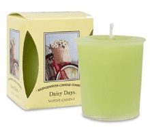 Daisy Days Boxed Votive Candle